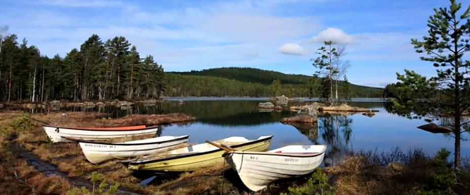 Våra båtar som finns att hyra.